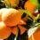 ส้ม ให้คอลลาเจนแก่ผิว